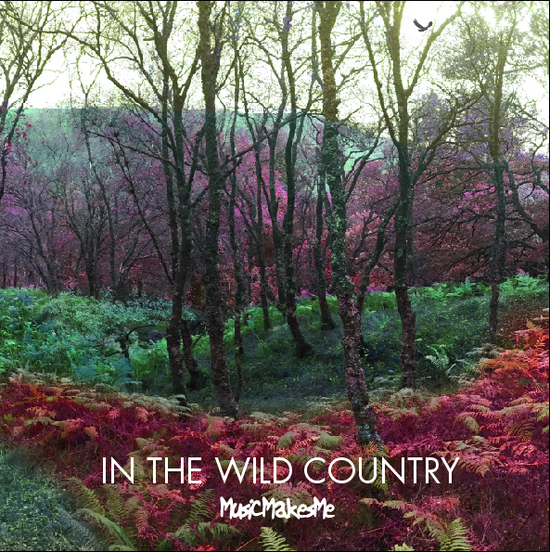 Music Makes Me - In the Wild Country